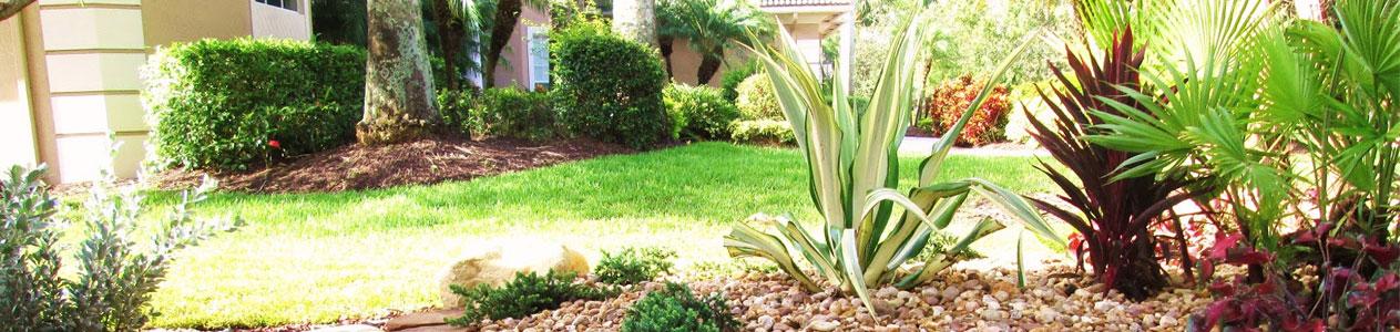 Agave Garden Service