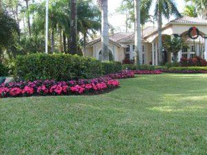 Landscape Garden Installation Service