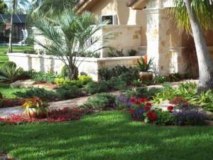 Exterior Design Plants Gardening
