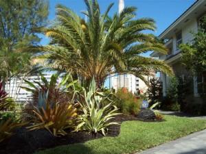 Residential Landscape Garden Design