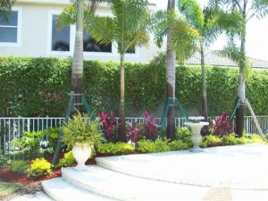 Residential Landscaping Maintenance