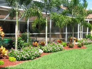 Garden Landscape Lalbagh