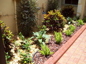 Landscape Plants Design Services