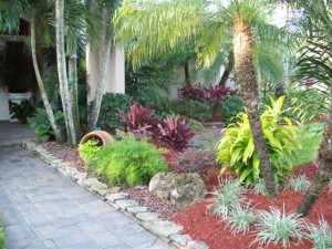 Outdoor Landscape Garden Design