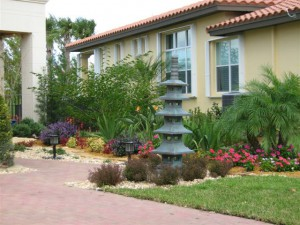 Indoor Plants and Garden Service