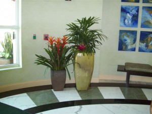 Flower Design Landscape of Indoor
