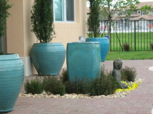 Water features Plants Services